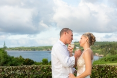 Ritz_Carlton_Kapalua_Wedding_Maui_Photographer_Mieko_Photography_023
