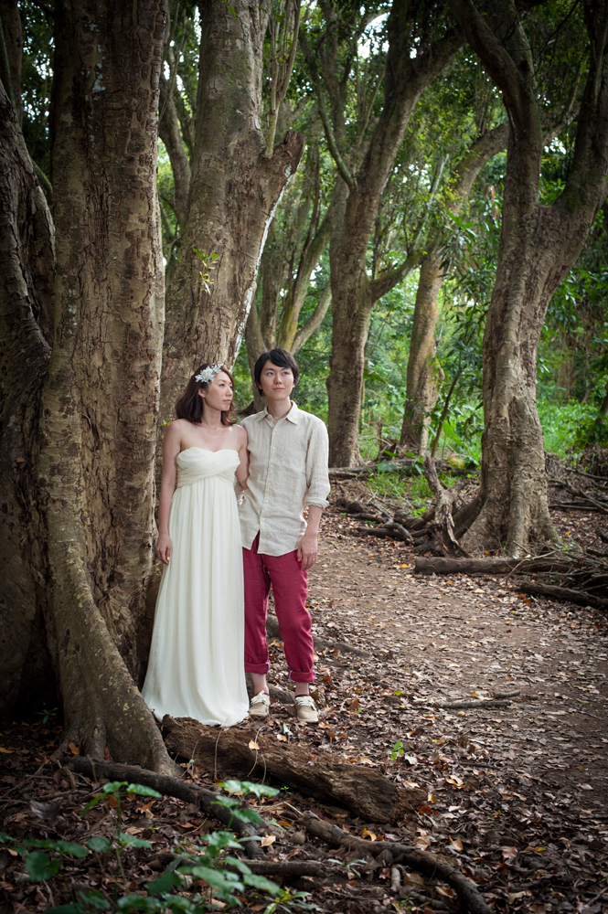 Maui Wedding Photographer, Kapalua, Maui Photography